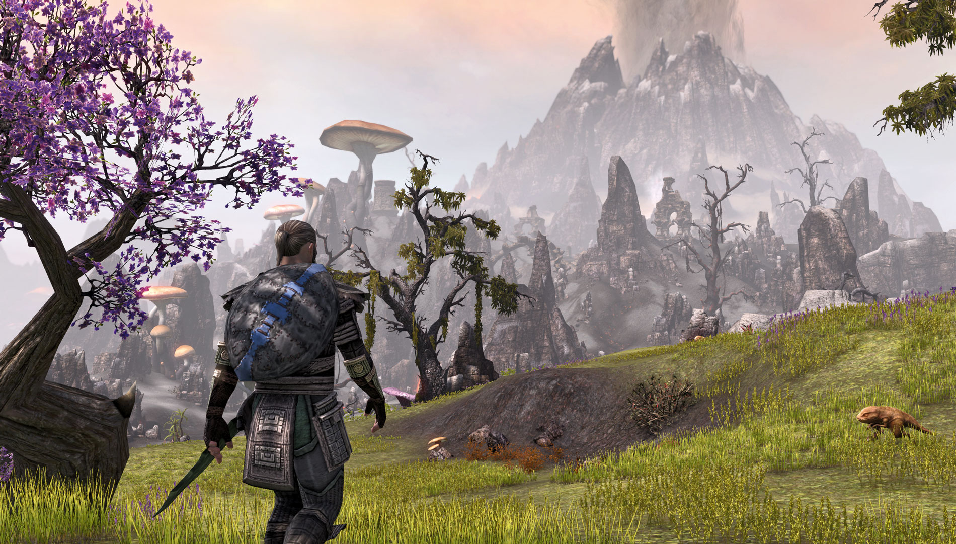Bethesda Tries to Justify Elder Scrolls Online 39 s Subscription Fee Doesn