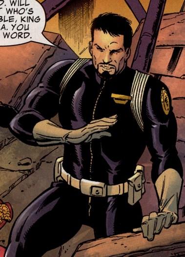 tony stark director of shield