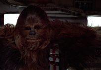 Chewie featured