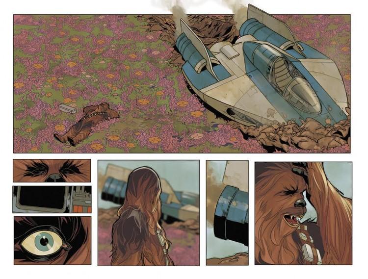 Chewbacca Issue 1b